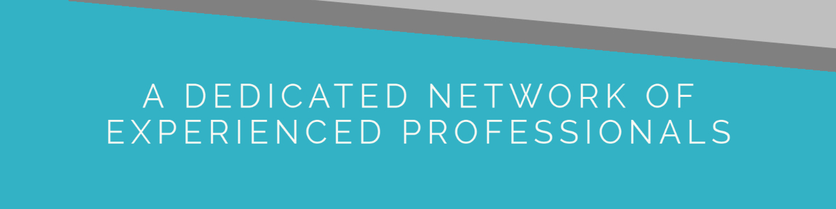 4. A dedicated network of Experienced Professionals